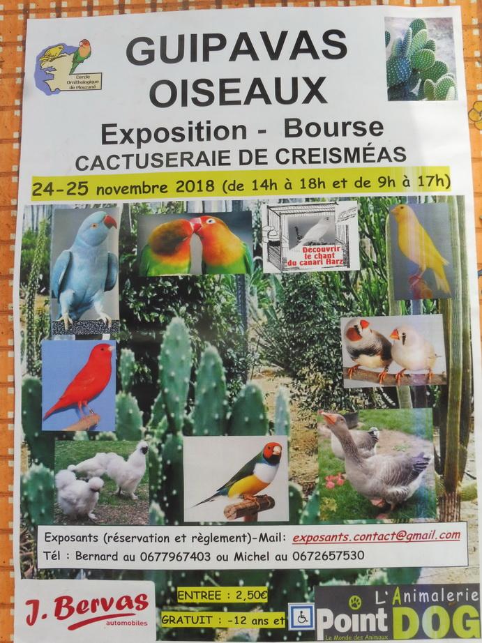 Bourse aux oiseaux à la cactuseraie