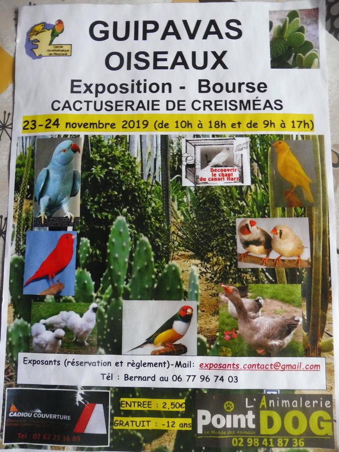 Bourse aux oiseaux à la cactuseraie le 23 et 24 novembre 2019